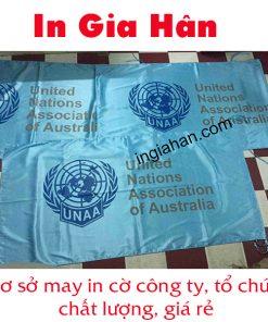 may cờ liên hợp quốc